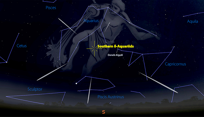 The Southern Delta Aquariids