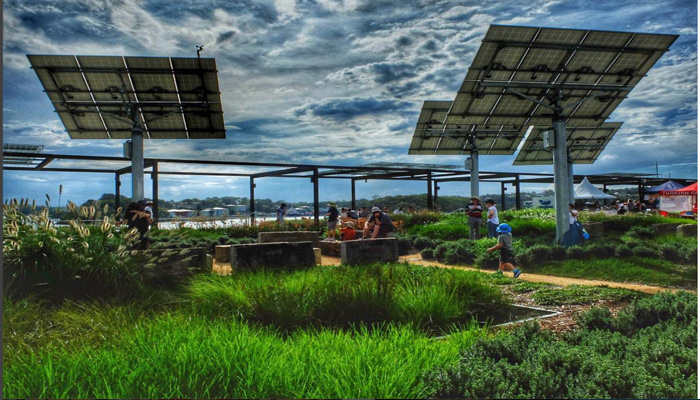 Community gardeners. market day vistors and stufent gorups are now regulars to Sydney's newest and largest green rooftop.
