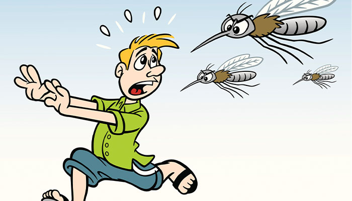Why do mozzies bite some people and not others?